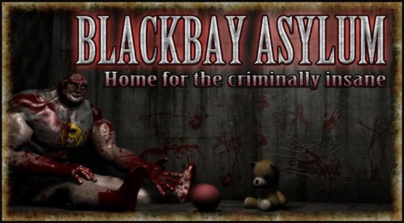 BlackbayAsylumBanner