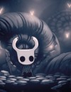 Hollow Knight on Steam Greenlight