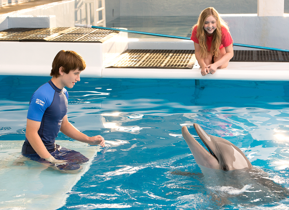 dolphin-tale-2-2
