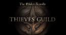 The Elder Scrolls Online: Tamriel Unlimited Thieves Guild DLC – Review