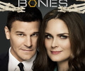 Bones: Season 11 (DVD) – Series Review
