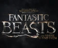 Fantastic Beasts and Where to Find Them (Blu-ray) – Movie Review