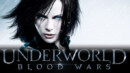Underworld Blood Wars (Blu-ray) – Movie Review