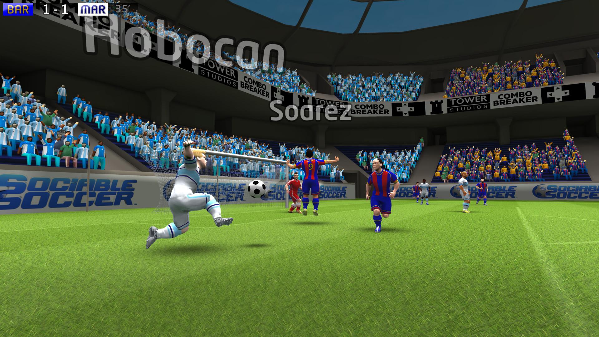 Sociable Soccer_02