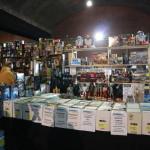 Comic Con Antwerp (7)
