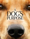A Dog's Purpose (DVD) – Movie Review