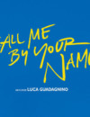 Call Me by Your Name (Blu-ray) – Movie Review