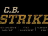 Strike: Season 1 & 2 (DVD) – Series Review