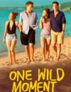 Un moment d'égarement (One Wild Moment) (VoD) – Movie Review