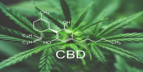 I take CBD while playing games. My thoughts after one week.