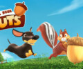 Save Your Nuts – Review