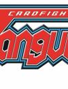 Cardfight!! Vanguard – Rarity guide