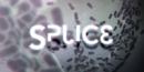 Splice – Review