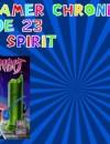 The Gamer Chronicles Ep:23 Ninja Spirit!