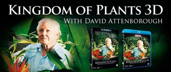 Home Release – Kingdom of Plants