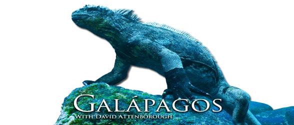 galapagos-with-david-attenborough