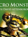 Micro Monsters (DVD) – Documentary Review