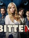 Bitten: Season 1 (DVD) – Series Review