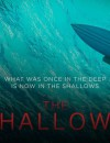 The Shallows (DVD) – Movie Review