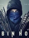 Robin Hood (DVD) – Movie Review