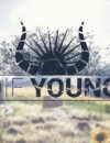 Die Young – Review
