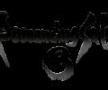 Romancing SaGa 3: meet the NPCs