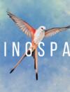 Wingspan – Review