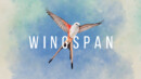 Wingspan – Review
