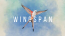 Wingspan (Switch) – Review