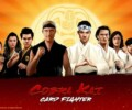 Cobra Kai: Card Fighter releasing in March
