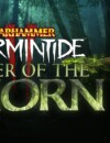 Warhammer Vermintide 2: The Sister of the Thorn career out now